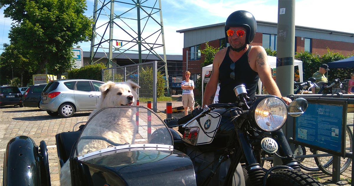 5 Upcoming Events in Denver That Will Have You and Your Dog Slobbering